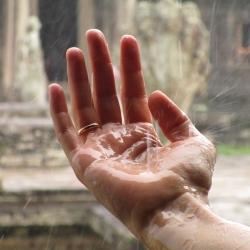 Magical Monsoon